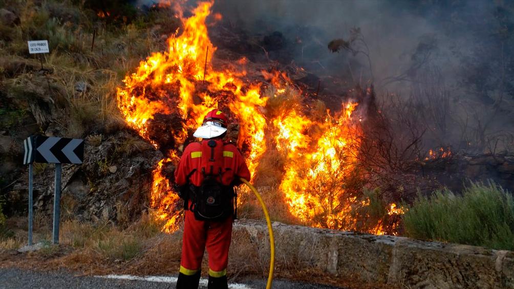 la-ola-de-calor-causo-incendios-en-grecia,-turquia,-italia-y-espana