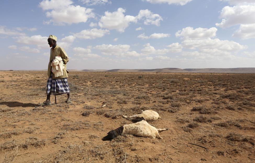 segun-el-banco-mundial,-el-cambio-climatico-puede-hacer-migrar-a-216-millones-de-personas